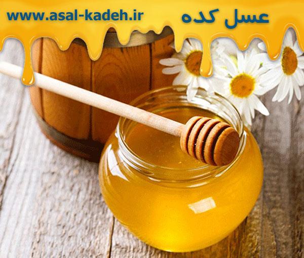 خرید عمده عسل ارگانیک بدون واسطه از زنبوردار