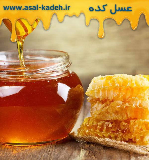 خرید عسل طبیعی و 100% خالص به صورت عمده مستقیم از تولید کننده