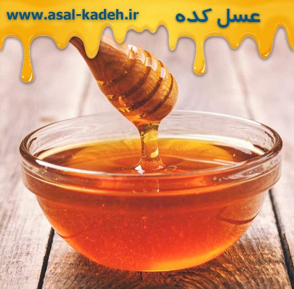 فروش عسل چهل گیاه به قیمت عمده