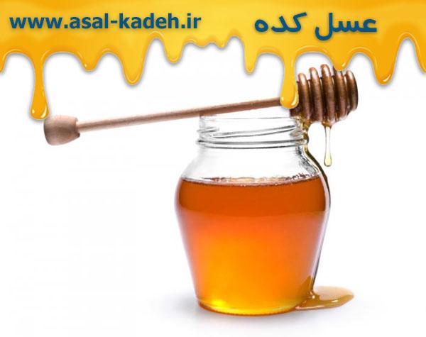 خرید عسل چهل گیاه طبیعی به قیمت عمده در مرکز فروش عسل ایران