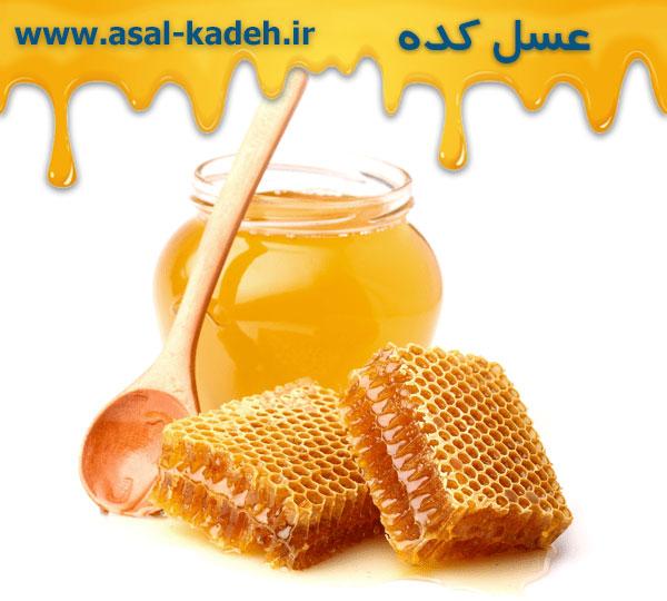 خرید عمده عسل ارگانیک بدون واسطه از تولید کننده در عسل کده