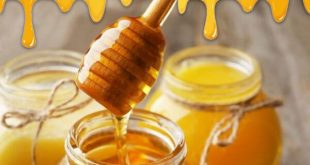 خرید اینترنتی عسل گون طبیعی به صورت عمده