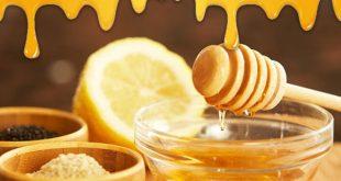 فروش عمده عسل طبيعي و ارگانيك در تناژ بالا