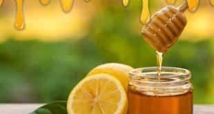 خرید و فروش عمده عسل طبیعی