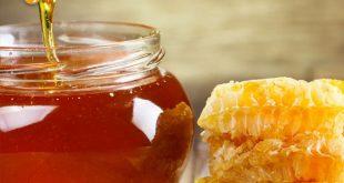 خرید عسل طبيعي و 100% خالص به صورت عمده مستقيم از توليد كننده