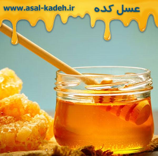 خرید عمده عسل در تهران