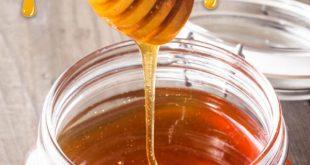 قیمت فروش عمده عسل طبيعي چهل گیاه و كنار ارگانيك
