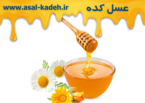 مرکز پخش عسل در تهران