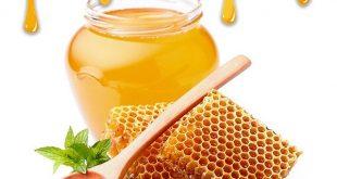 قیمت روز عسل طبیعی در بازار تهران - فروش عمده انواع عسل گياهي