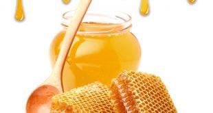 خرید عمده عسل ارگانیک بدون واسطه از تولید کننده در عسل كده