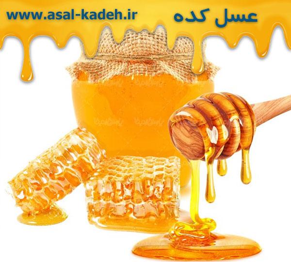 خرید عمده عسل از تولید کننده