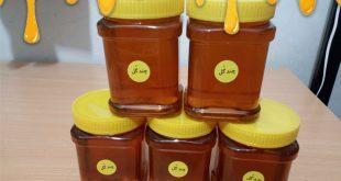 مراكز خريد عمده عسل | فروش انواع عسل طبيعي