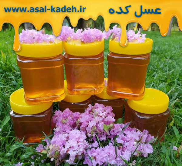 نمایندگی فروش عسل ارگانیک در تهران و کرج